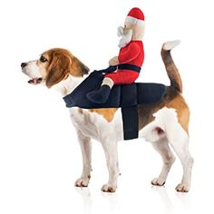 Santa Claus Jockey Dog Costume by Midlee * Find out more about the great product at the image link. (This is an affiliate link) #DogApparelAccessories