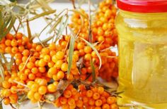 Облепиховое масло - лечебные свойства, как принимать. Применение облепихового масла