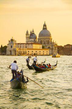 Gondolas at sunset, Venice