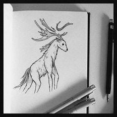 Deer Illustration  FB -> https://www.facebook.com/shokart74/