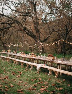 Long handmade pallet farm table for the wedding reception - love the string lights in the trees Forest Wedding, Woodland Wedding, Autumn Wedding, Farm Wedding, Rustic Wedding, Picnic Table Wedding, Long Wedding Reception Tables, Pallet Wedding, Green Wedding