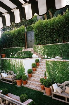 Our terraces aren't as steep and we have a different climate but I love the ivy walls.    {stunning courtyard and garden of, Mark Sikes' West Hollywood home}