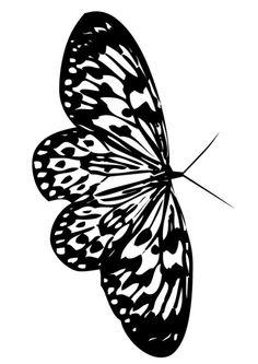 www.hellokids.com : Print page Beautiful butterfly
