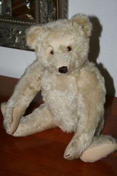 weißer Steiff VK Teddy • ff-Knopf • 43 cm • 1920-30er J.  • Stimme • Teddy Bear