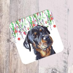 Canine Rottweilers Gift Idea Hoodie Puppy Design Dog Present Reasons to Wake Up Early