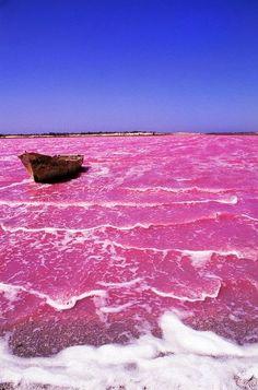 Lac Rose, pink lake in Senegal