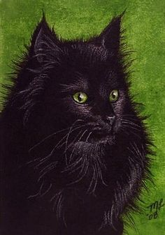 Hey, I found this really awesome Etsy listing at http://www.etsy.com/listing/82057408/aceo-oe-giclee-print-black-cat-melody