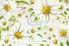 Daisy ClipArt Watercolor Flower Camomile Daisies Handpainted Floral White Green Romantic Spring Original Digital Invitation Wedding DIY Pack (9.00 USD) by froufroucraft