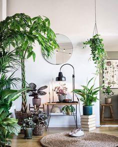 """812 Likes, 19 Comments - LEVA&BO (@levaobo) on Instagram: """"Grön trend! Fyll hemmet med växter och utnyttja alla nivåer – häng amplar i taket och sätt…"""""""