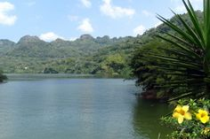 This is something I need to do in Puerto Rico! Take a Boat Ride to Lunch at Lago Dos Bocas