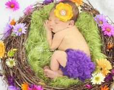 infant photography trunk - Google Search