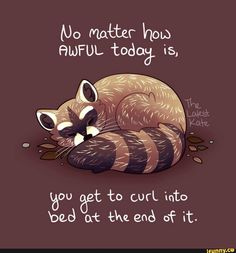 "'""No matter how awful today is."" Cuddly Raccoon' by thelatestkate - Inspirational Animal Quotes, Cute Animal Quotes, Cute Quotes, Happy Quotes, Best Quotes, Motivational Quotes, Cute Animals, Happy Thoughts, Positive Thoughts"