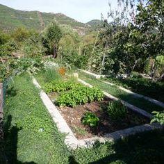 Frisches Gemüse im eigenen Garten. Bio Urlaub mit http://www.renatour.de