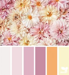 { flora hues } image via: The post Flora Hues appeared first on Design Seeds. Color Schemes Colour Palettes, Warm Colour Palette, Bedroom Color Schemes, Warm Colors, Color Combos, Old Rose Color Palette, Yellow Color Schemes, Pastel Palette, Bedroom Colors