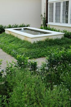 An old garden belonging to a house undergoing a renovation, and similarly in need of an update. The revamp of the garden had much to do about connecting the hou Garden Types, Public Garden, Cape Town, Architects, Entrance, Beds, Garden Design, Swimming Pools, Pergola