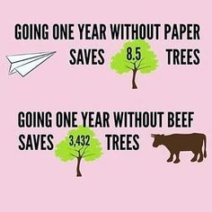 A perfect addition to the posters above office printers - Good to know - Vegan Food Vegan Facts, Vegan Memes, Vegan Quotes, Vegan Humor, Vegetarian Facts, Vegetarian Quotes, Going Vegetarian, Cake Vegan, Why Vegan
