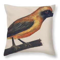 Chorister Robin: A pastel drawing of a robin by Kelly Goss Art printed on to throw pillows in 100% polyester or 100% cotton fabric.  Perfect to brighten up and decorate your home lounge suite or bedroom. The special gift to spice up a friend's home decor, especially if they love African wildlife and bird art.