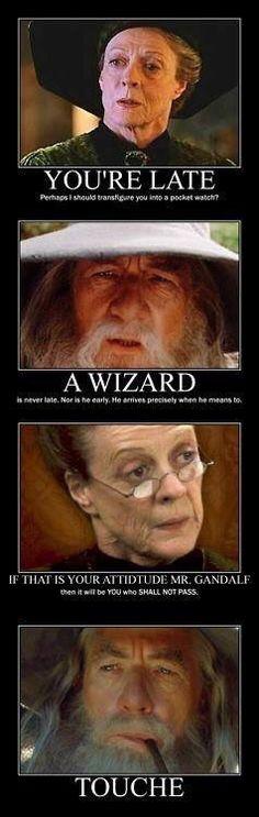 Professor McGonagall vs Gandalf 😂😂