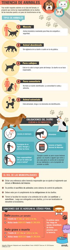 Doterra, Pet Care, Dogs, Comprehension Strategies, Pet Dogs, Dog Breeds, Gatos, Animal Babies, Animaux