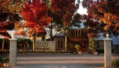 Welcome - Allan Scott Wines, New Zealand, Mansions, House Styles, Lunch, Wedding Ideas, Manor Houses, Villas, Eat Lunch