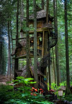 tree houses10 Treehouses you wish were in your backyard (22 photos)