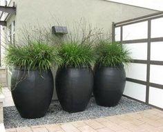 La Belle Jardin: Big pots of grass.surely we could do this :) La Belle Jardin: Big pots of grass. Outdoor Planters, Garden Planters, Outdoor Gardens, Black Planters, Landscape Design, Garden Design, Back Gardens, Fairy Gardens, Garden Spaces