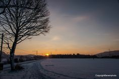 die Sonne kommt... - die Morgensonne im Winter