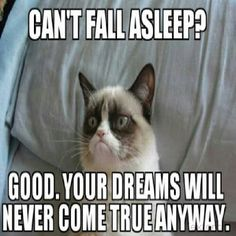 Funny pictures about Grumpy Cat is feeling poetic. Oh, and cool pics about Grumpy Cat is feeling poetic. Also, Grumpy Cat is feeling poetic. Grumpy Cat Quotes, Meme Grumpy Cat, Gato Grumpy, Grumpy Kitty, Grumpy Baby, Grumpy Cat Birthday, Kitty Cats, Meme Comics, Memes Humor