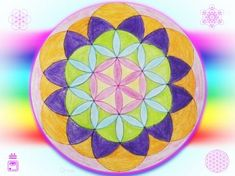 ornai semilla de la vida Portal, Easter Eggs, Patterns, Seed Of Life, Block Prints, Pattern, Models, Templates