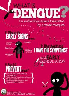 What is the mosquito-borne virus Dengue fever?