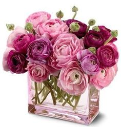 Pink & Purple Ranunculus ~ Vase is perfect