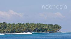 MINDSURF THIS -- TRAVEL SLIDESHOW 13 | SURFLINE.COM