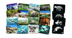 Animals and Nature 31744: Roylco 59253 What S Inside Dinosaur X-Rays Grade: Kindergarten To 5 (Pack Of ... -> BUY IT NOW ONLY: $33.9 on eBay!