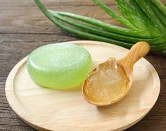 Aloe Vera für Seife