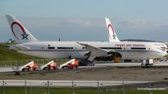 Royal Air Maroc Dreamliner Stored at Paine Field Boeing 787 Dreamliner, Commercial Aircraft, Circle Of Life, Paine Field, Aviation, Africa, Reuse, Planes, Storage