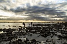 Le havre by les photos du seb on 500px France, Explore, Beach, Water, Photos, Outdoor, Gripe Water, Outdoors, Pictures
