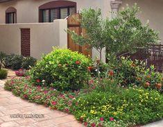 Past Project Gallery - Gill Garden Center + Landscape Co. Landscape Nursery, Inside Outside, Garden Landscaping, Landscaping Ideas, Past, Sweet Home, Home And Garden, Gallery, Nature