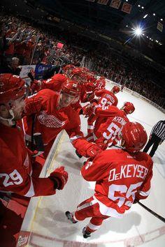 1/18/14 Detroit Hockey, Hockey Teams, Hockey Players, Sports Teams, Winged Girl, Red Wings Hockey, Hockey Season, Go Red, Detroit Red Wings