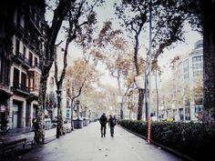 city life, city love