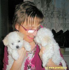 Bessy 1/2012g - Bichon Bolognese / Boloňský psík