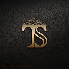 Image result for ts logo