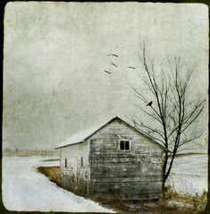By Jamie Heiden    I'm so in love with this photographer's textured photo art ... it's incredible ... I'm definitely a new fan!