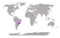 Eu já explorei 1.93% do mundo #mytravelmap