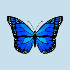 Butterfly Discover Blue butterfly Sticker by Gaspar Avila Blue Butterfly Wallpaper, Butterfly Canvas, Cute Butterfly, Butterfly Design, Butterfly Painting Easy, Blue Butterfly Tattoo, Butterfly Pillow, How To Draw Butterfly, Butterfly Stencil