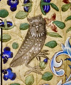 Sleepy Owl cent Book of Hours France Book Of Hours, Medieval Manuscript, Miniature, Owl, France, Books, Painting, Animals, Libros