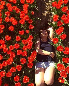Wer Tulpen mag, fühlt sich in Fluwel's Tulpenland pudelwohl. Danke fürs Foto, zaplatkina
