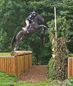"""My horse would look at this and be like, """"I'm not jumping THAT!"""""""