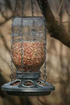 Mason Jar & Chicken Base Bird Feeder