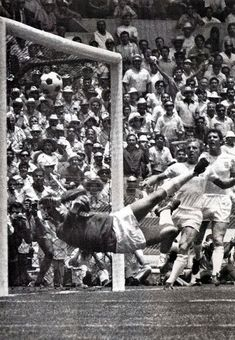 """The Save"" Brazil vs. England 1970 World Cup. Retro Football, Chelsea Football, School Football, Vintage Football, Sport Football, Football Soccer, England National Football Team, England Football, National Football Teams"