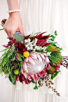 I'm crazy about Proteas right now ! Amanda MANGOWEDDINGSHAWAII.COM